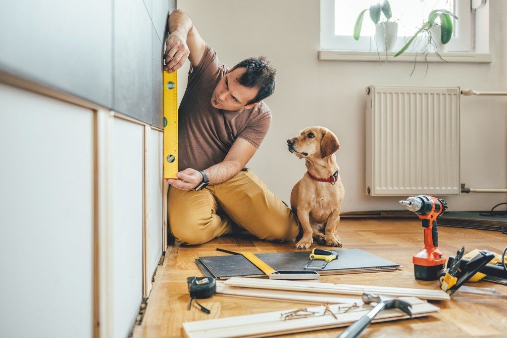 man renovating his house with a dog