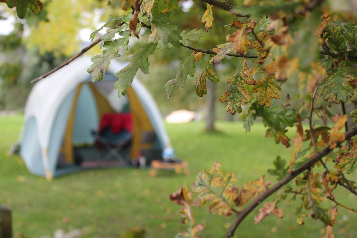 glamping site in park